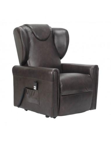 Sillón reclinable con 2 motores, levantapersona, asiento no deformable, cómodas orejas laterales, en cuero, tamaño medio
